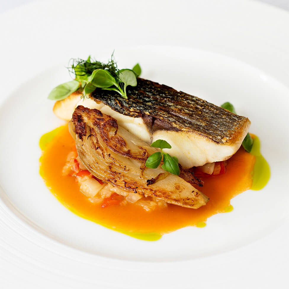 SEA BASS, FENNEL RAGU, ROASTED RED PEPPER, BASIL